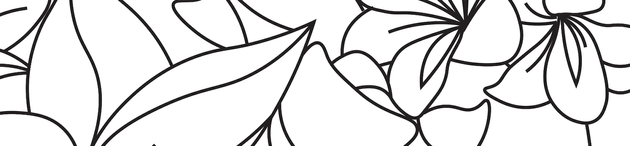 Adobe Coloring Book Chapter 4: Dreams